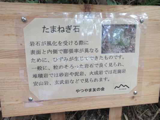 タマネギ石の看板