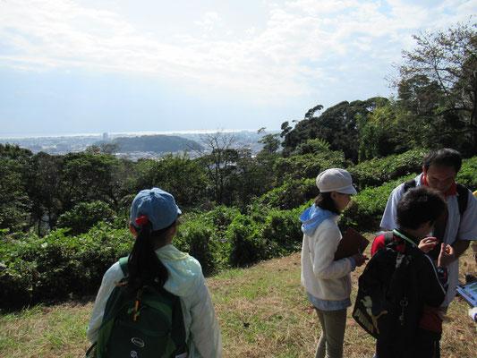 頂上から駿河湾が見えました。かつてこの辺りは海で、谷津山や八幡山は海の中に浮かぶ島でした。