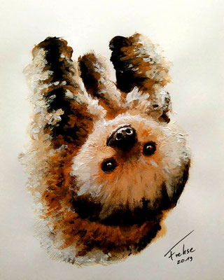 YOUNG SLOTH   | Acryl on Cardboard 20x30 cm |