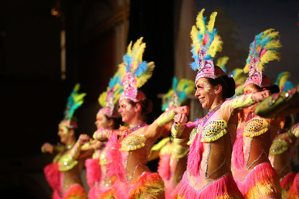 Ramba Samba - So geht Fassenacht in Rio