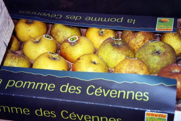 Les Pommes Reinettes