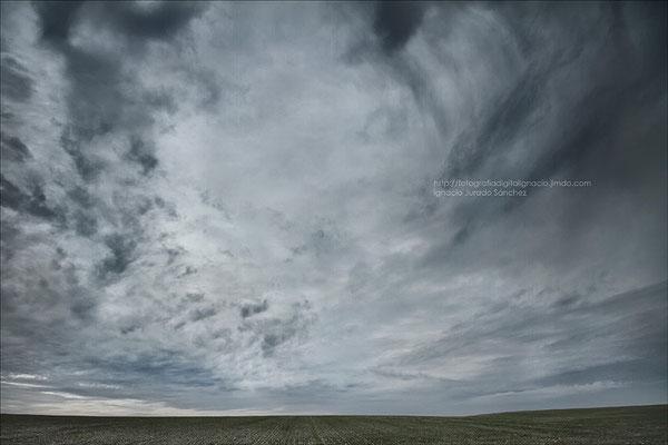 El cielo de la dehesa