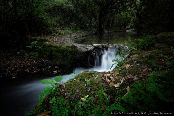 Rio MAjaceite Benamahoma-El bosque (Cadiz)