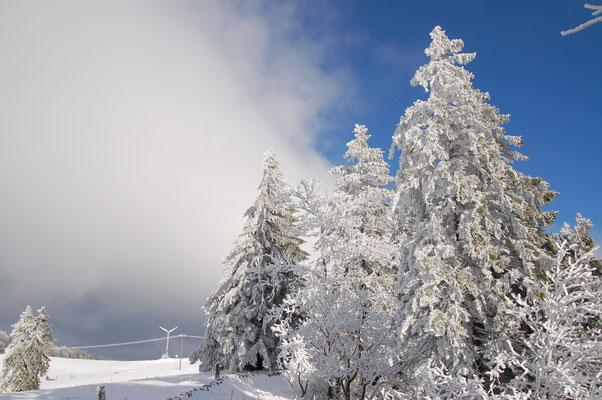 Winterwanderungen Jura
