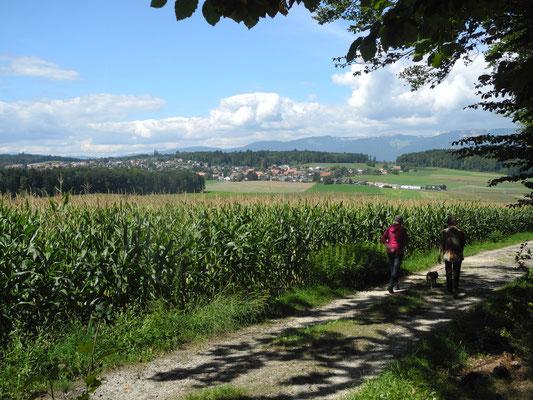 Wanderungen Mittelland Aare Bucheggberg Wasseramt und Jurasüdfuss