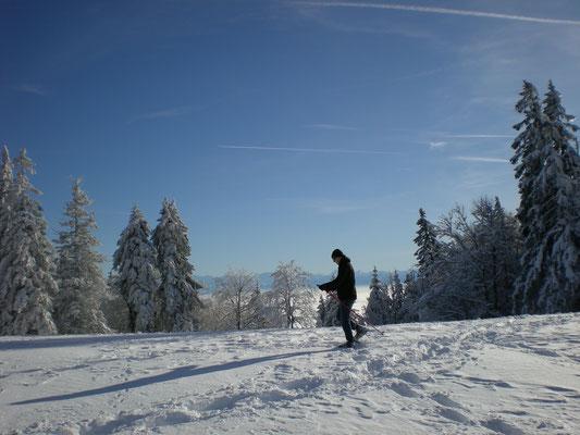 Winterwanderung Jura