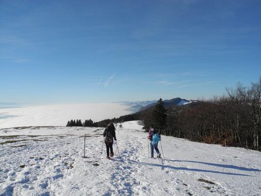 Winterwanderung Weissenstein dank Gondelbahn rasch auf 1300 m Winterwanderung zur Röti oder Hasenmatt