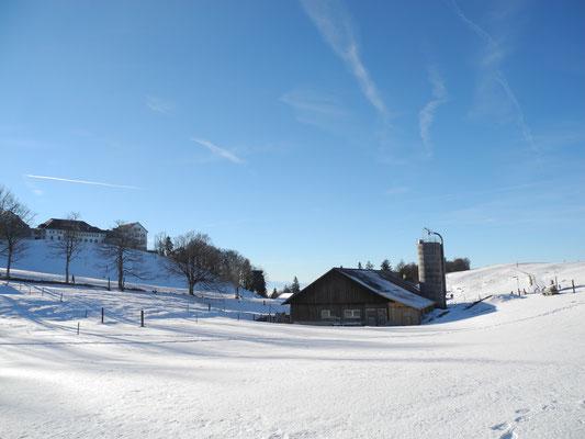 Winterwanderung Jura 1. Kette 365 Tage Wandern ab Balmberg