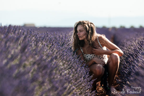 shooting Valensole