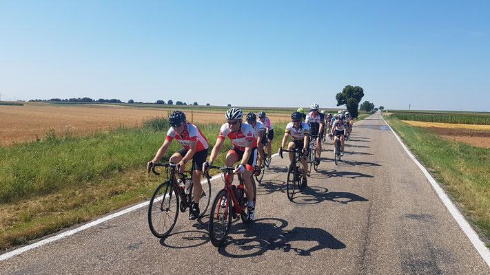 Bild von Bernd Schmidt: Große Radfahrgruppen ziehen durch die Südpfalz