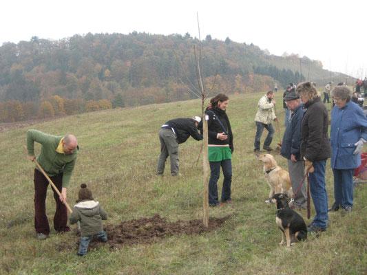 Patenbaumaktion 2009
