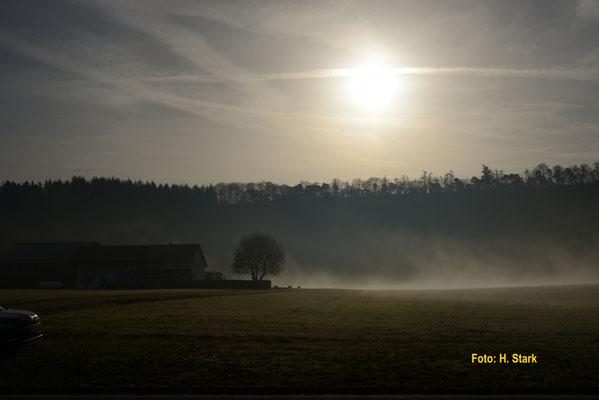 Morgenstimmung Richtung Michelbachsee