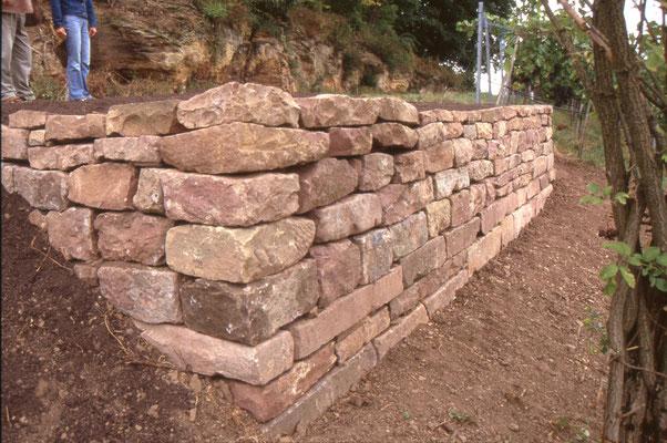 Fertige Trockenmauer am Spitzenberg