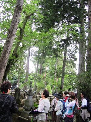 政宗の八男:竹松丸と夫人:愛姫の母の墓所