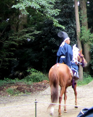 神社境内 杉の木のいい香りが立ち込め 鳥居祭もいい雰囲気です