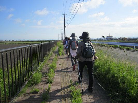 バス通りに沿って地下鉄荒井駅へ向かいます