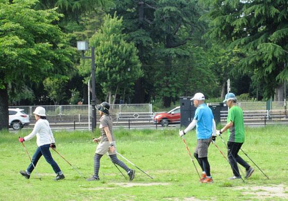 ポールを持っての追い抜き歩行 スピードがつく分 歩行だけの時より大変です