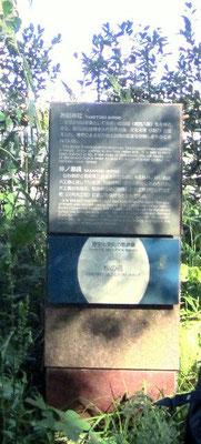仙台二高裏『 桜の道』表示 通行止め解除となりました
