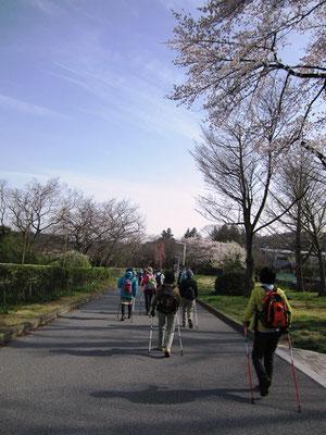 国際センター駅へ通じる道
