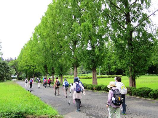 学生のいない土曜日に 大人たちが川内キャンパス闊歩します