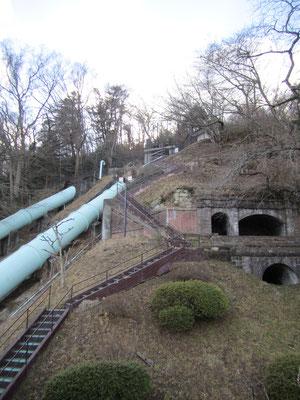 記念館2階から見える整備された森