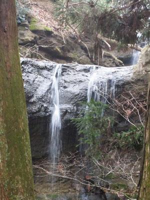 夫婦杉の合間から見る 三居澤不動滝
