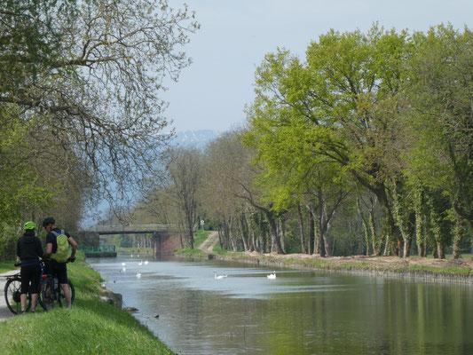 Canal im Elsaß