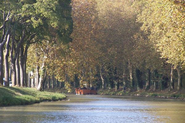 Fahrt auf dem Canal du Midi