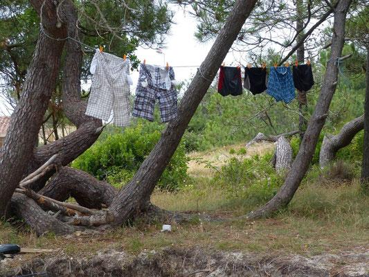 Da hatte jemand Tag der großen Wäsche