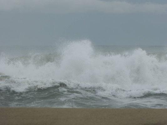 Das Meer rauscht und schlägt Wellen