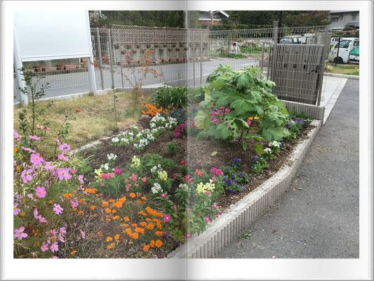 マーブル 玄関前花壇②