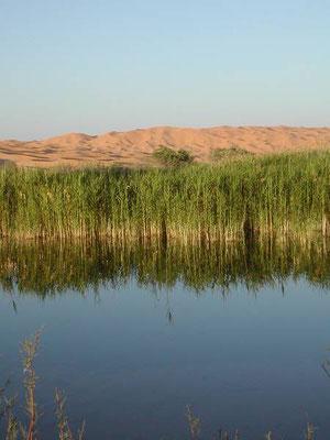 Il lago di Ayn Ouadette.