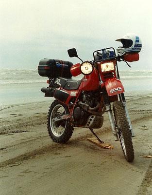 Louise I - Una Honda XL600 R