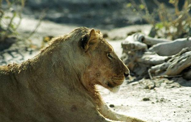 Khaudum Game Reserve