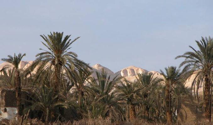 L'oasi di El Kharga nel sud est dell'Egitto