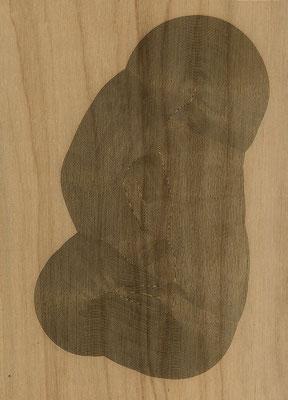 W3L1Y17S1160, marine plywood, 2017, 29x40cm