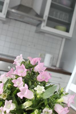 Die Küche in der Ferienwohnung