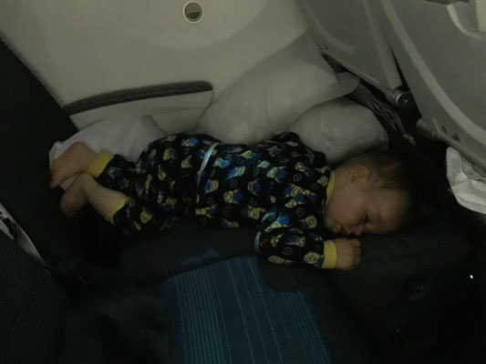 Fly Tot for babies on flight - Florence to Calgary