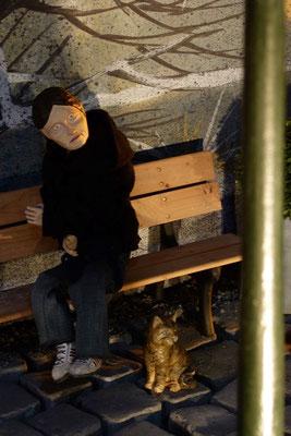 Maria aber bewahrte alles,   (Milieukrippe in Sankt Maria in Lyskirchen, Foto © lyskirchen)