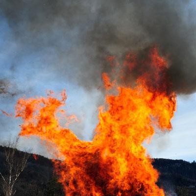 Foto: Andreas Ender, photo-art+painting - Portrait eines mächtigen Feuerwesen