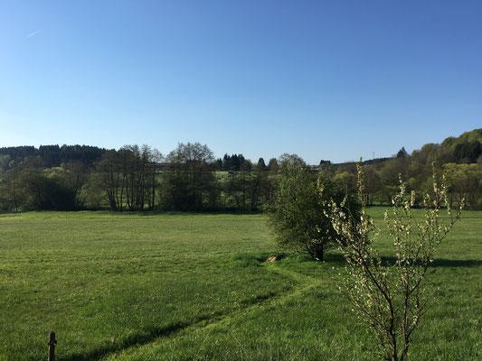 Aussicht aus unserem Garten im Mai