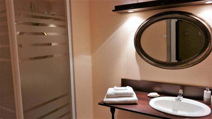 Salle de bain avec douche et lavabo et toilettes séparées