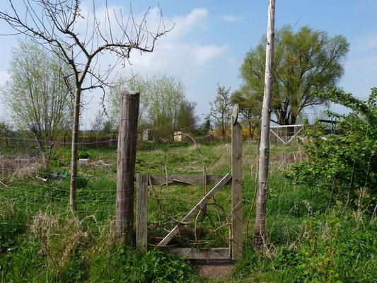 Der Eingang zum Gemüsegarten im Frühjahr.
