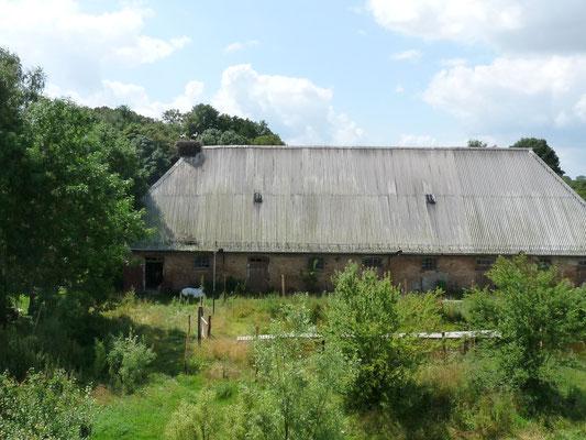 Der Stall ... Heim für Hühner, Gänse, manchmal Schafe und Schleiereule und ganz viel Gerümpel. Obenauf as Storchennest.