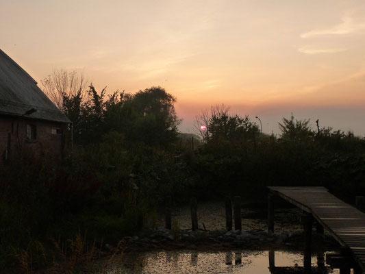 Ein Abend im August und Sonnenuntergang über unserem Teich.