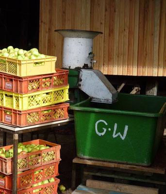 Dann kommen die sauberen Äpfel in Kisten zur nächsten Station ...