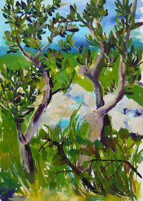 2021_5_22_Olivenbäume im Karst bei San Giovanni di Timavo_22x17cm_Aquarell_Papier