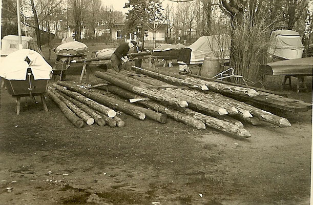 Holzpfähle für die neuen Stege 1957