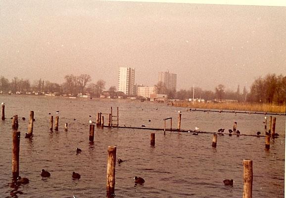 Hochwasser an der Scharfen Lanke 1967