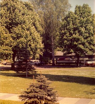 Die grüne Hölle auf dem Gelände am Pichelssee im Sommer 1974